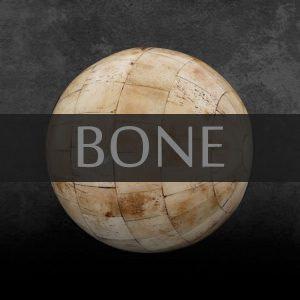 Bone - Antiques Shop