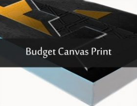 Budget Canvas Print