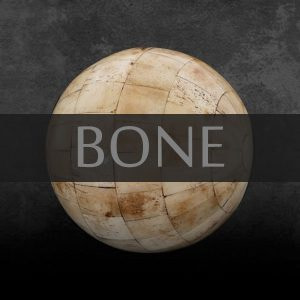 Bone - Antiques Shop